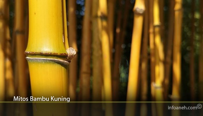 Mitos Bambu Kuning